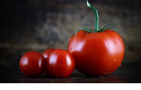 """<span class=""""entry-title-primary"""">הסגולות הבריאותיות של העגבניה – מה אתם יודעים עליה ולמה חשוב לצרוך אותה מדי יום</span> <span class=""""entry-subtitle"""">הנה כמה יתרונות בריאותיים וסגולות שבטוח תשמחו לשלב בתוך הסלט שלכם ולא לוותר עליה</span>"""