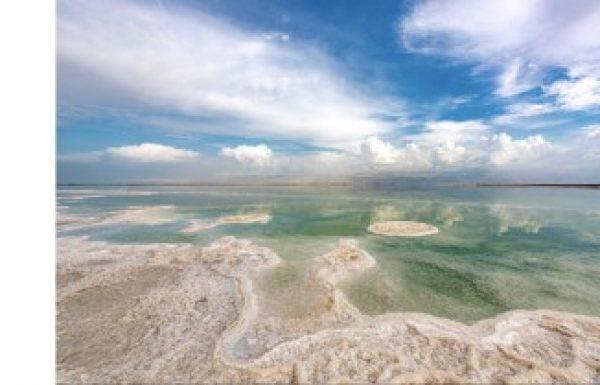 Dead Sea Life 2021 – תחרות צילומים בינלאומית.